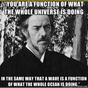 Alan Watts function of the universe
